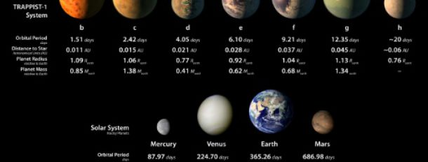 Représentation des sept planètes découvertes en orbite autour de l'étoile TRAPPIST-1  © European Southern Observatory/AFP Handout